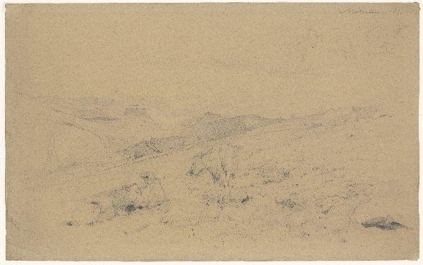 Heuvellandschap met koeien (Noorwegen)